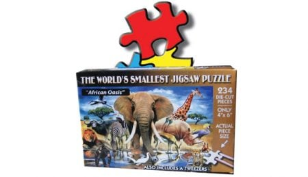 World's Smallest Puzzle