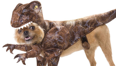 raptor-dog-costume