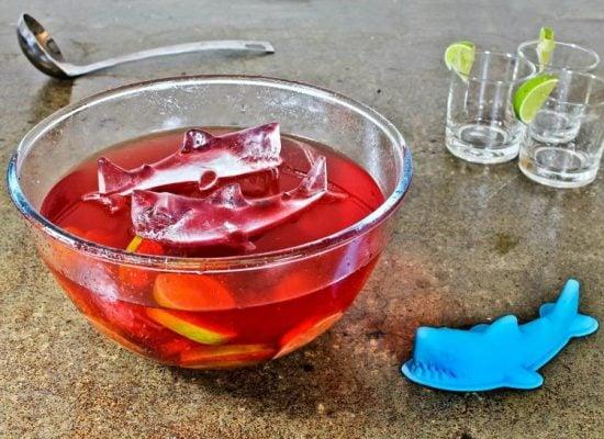 Shark Ice Mold