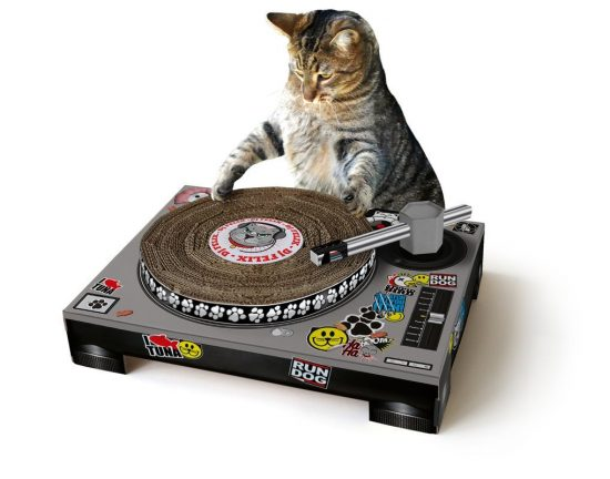 Cat DJ Turntable