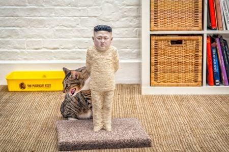 Kim Jong-un Cat Scratching Post
