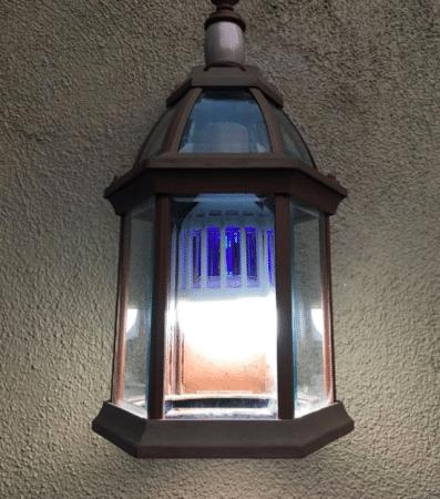 Bug Zapper Lightbulb