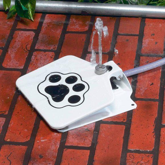Dog Water Fountain