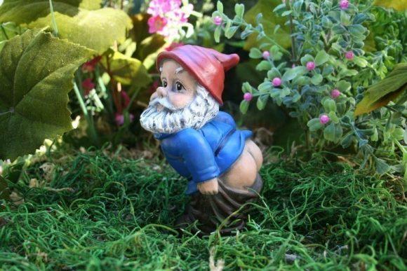Mooning Garden Gnome