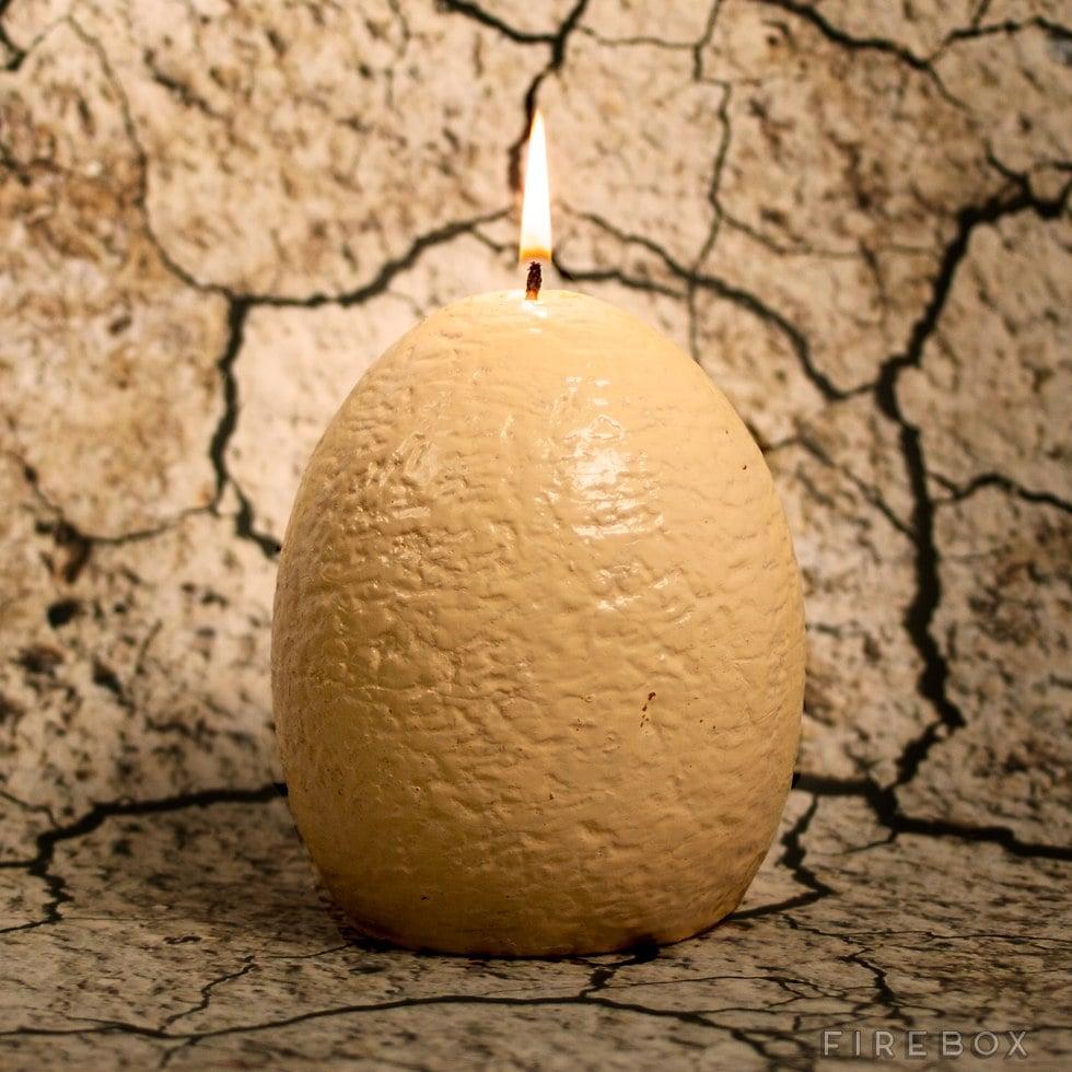 Hatching Dinosaur Egg Candle