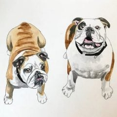 Personalized Pet Portrait Watercolor
