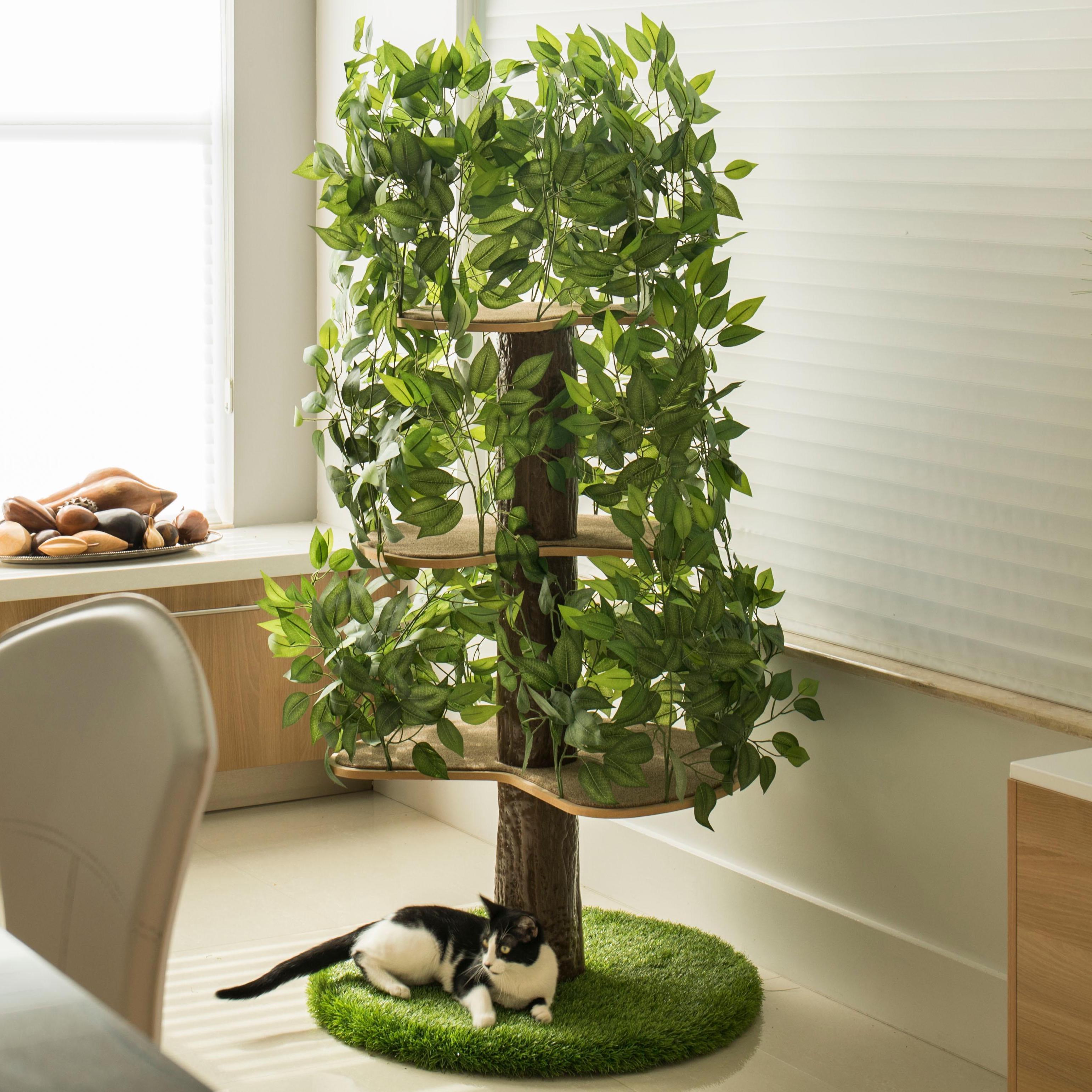 Indoor Cat Tree House 4 Jpg