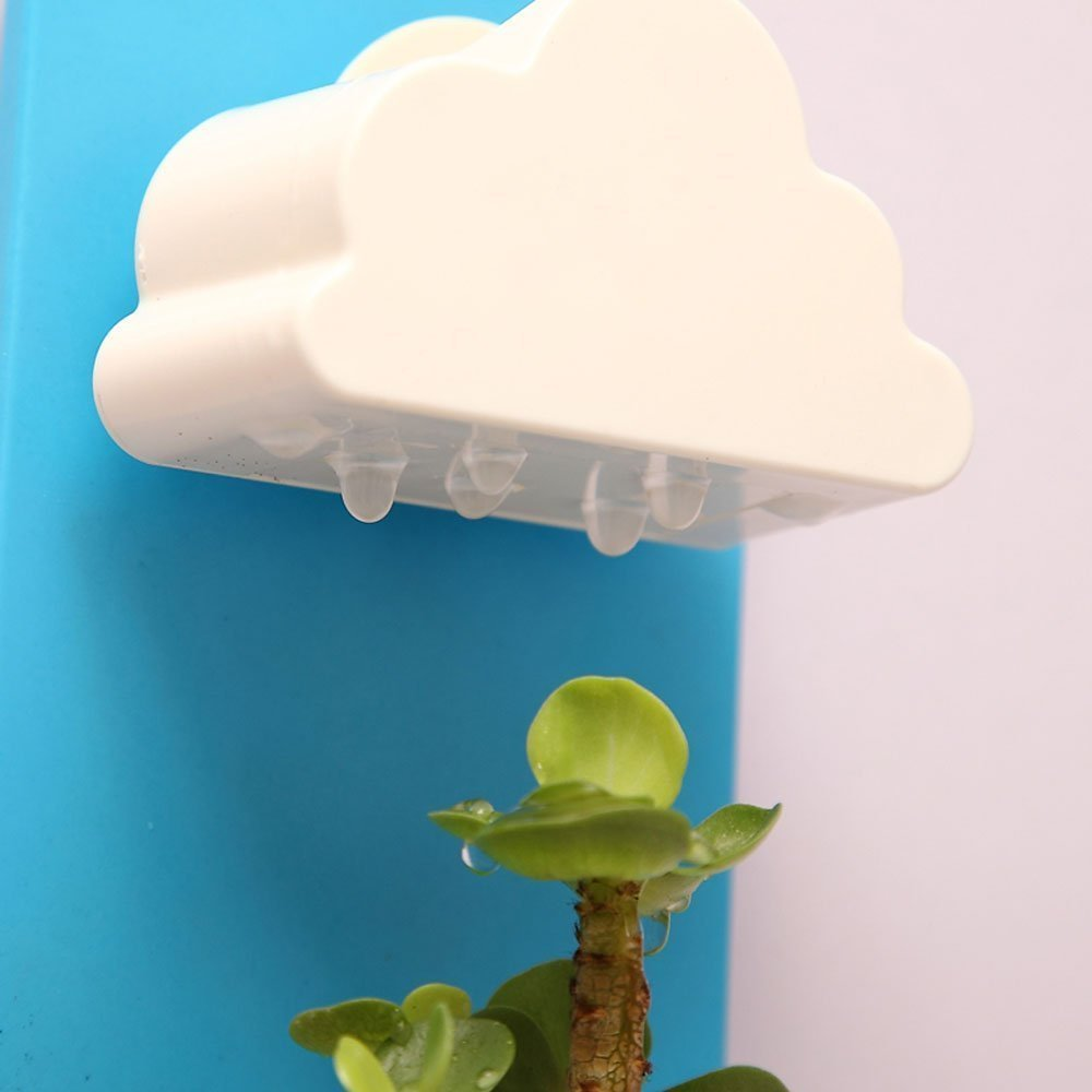 Rain Cloud Watering Pot