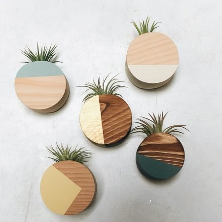 Magnetized Circle Planter