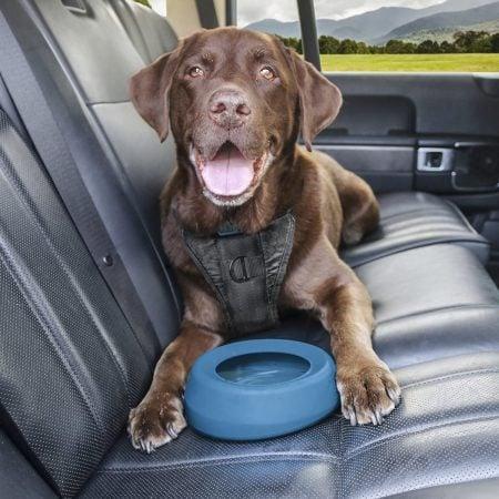 No Spill Dog Travel Bowl