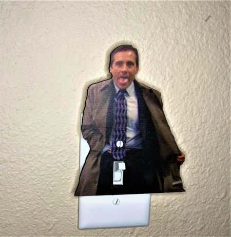 Flashing Michael Light Switch Cover